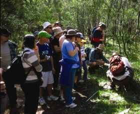 Warrumbungle National Park Discovery Program - Carnarvon Accommodation