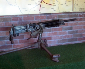 Woodpecker Gun - Carnarvon Accommodation