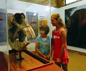 Australian Museum Diprotodon Exhibition - Carnarvon Accommodation