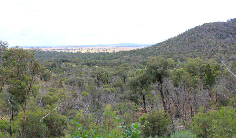 Ben Hall's Cave walking track - Carnarvon Accommodation