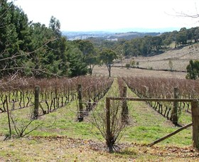 Habitat Vineyard - Carnarvon Accommodation