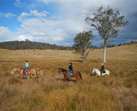 Chapman Valley Horse Riding - Carnarvon Accommodation