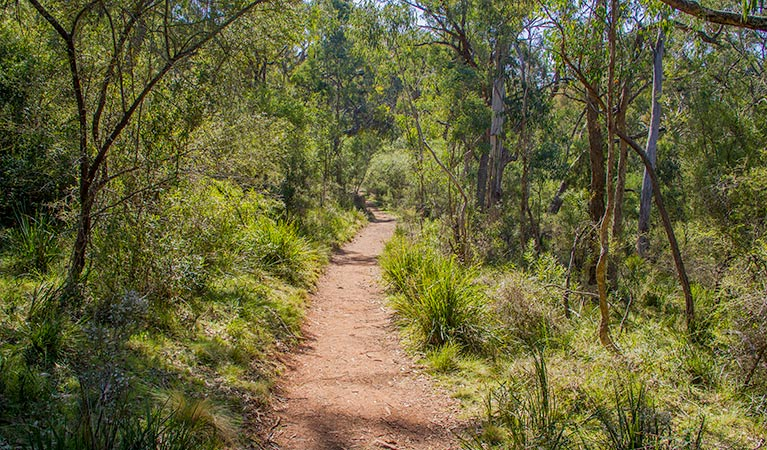 Mares Forest Creek walking track - Carnarvon Accommodation