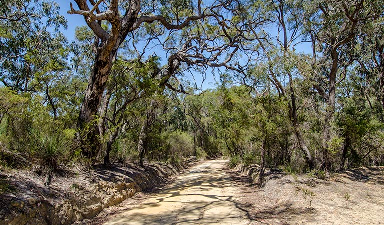 Howes trail - Carnarvon Accommodation