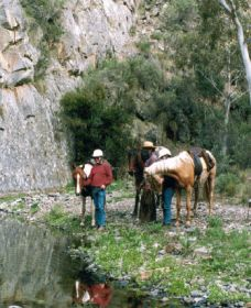 Yarramba Horse Riding - Carnarvon Accommodation