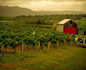 Around Hermitage Wine and Food Trail Hunter Valley - Carnarvon Accommodation