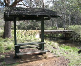 Barrington Tops State Forest - Carnarvon Accommodation