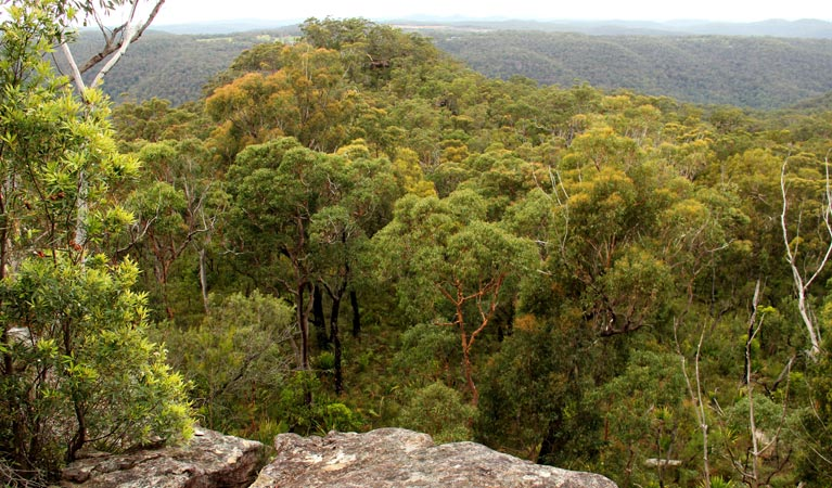 Mount Olive lookout - Carnarvon Accommodation