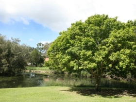 Hervey Bay Botanic Gardens - Carnarvon Accommodation