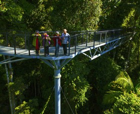 Tamborine Rainforest Skywalk - Carnarvon Accommodation
