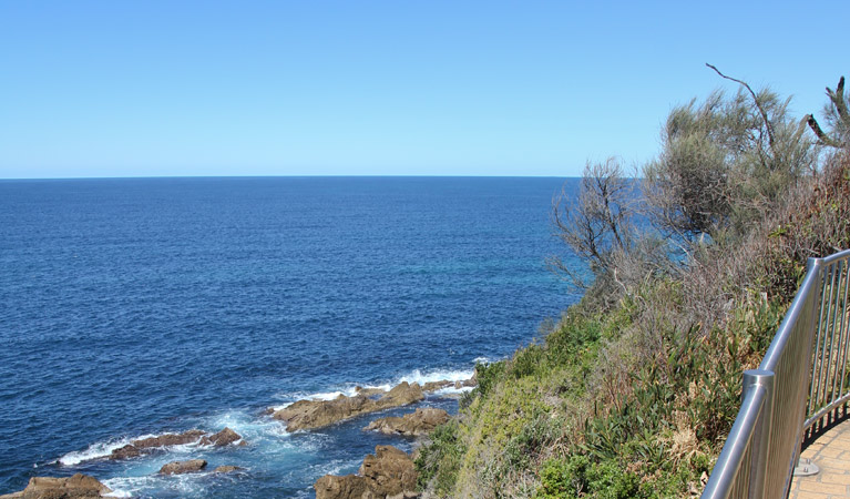 Moruya Heads lookout - Carnarvon Accommodation