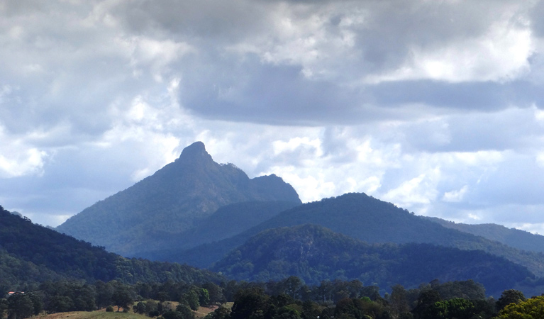 Wollumbin National Park - Carnarvon Accommodation