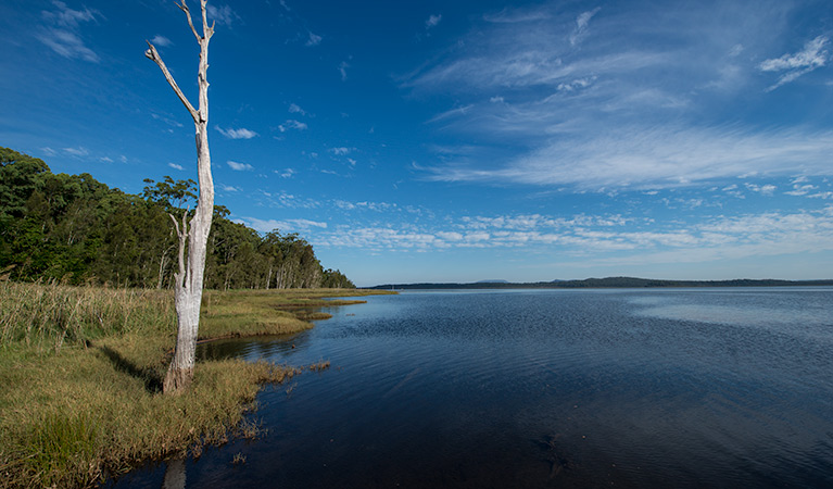 Lake Innes Nature Reserve - Carnarvon Accommodation