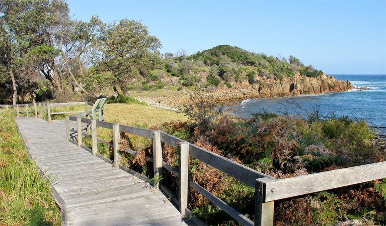 Mimosa Rocks walking track - Carnarvon Accommodation