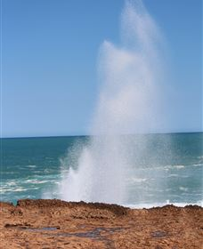 Blowholes and Point Quobba - Carnarvon Accommodation