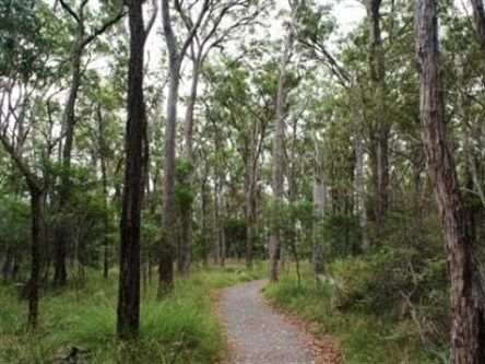 Caboolture Regional Environment Education Centre - Walking Trails - Carnarvon Accommodation