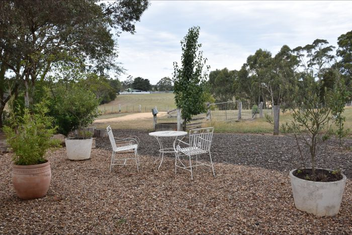 Cygnet Park Country Retreat - Carnarvon Accommodation