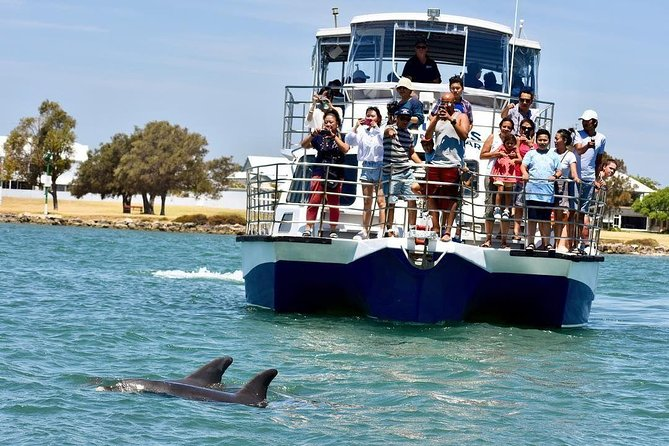 Mandurah Dolphin and Scenic Canal Cruise - Carnarvon Accommodation