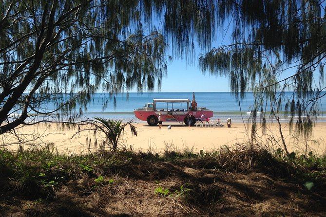 1770 Coastline Tour by LARC Amphibious Vehicle Including Picnic Lunch - Carnarvon Accommodation
