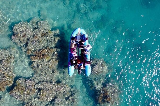 Glass-bottom boat tour with Whitehaven Beach - Carnarvon Accommodation