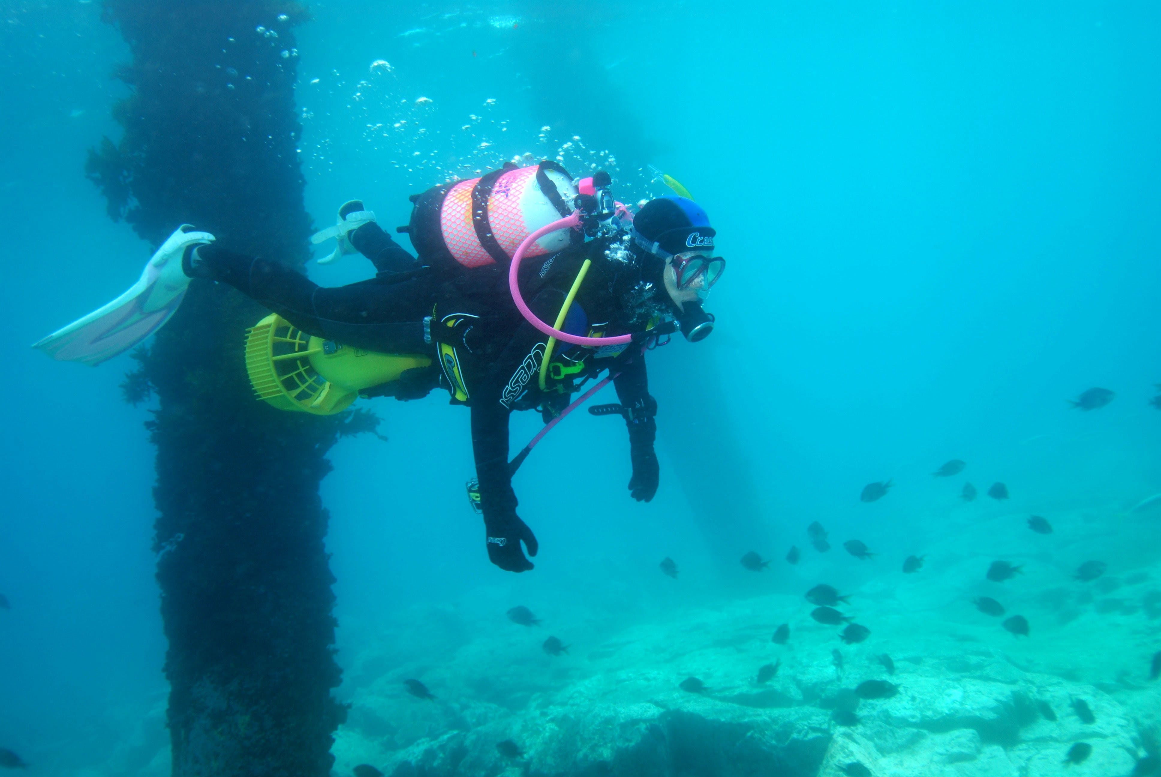 Shellharbour Scuba  and Photography Centre - Carnarvon Accommodation