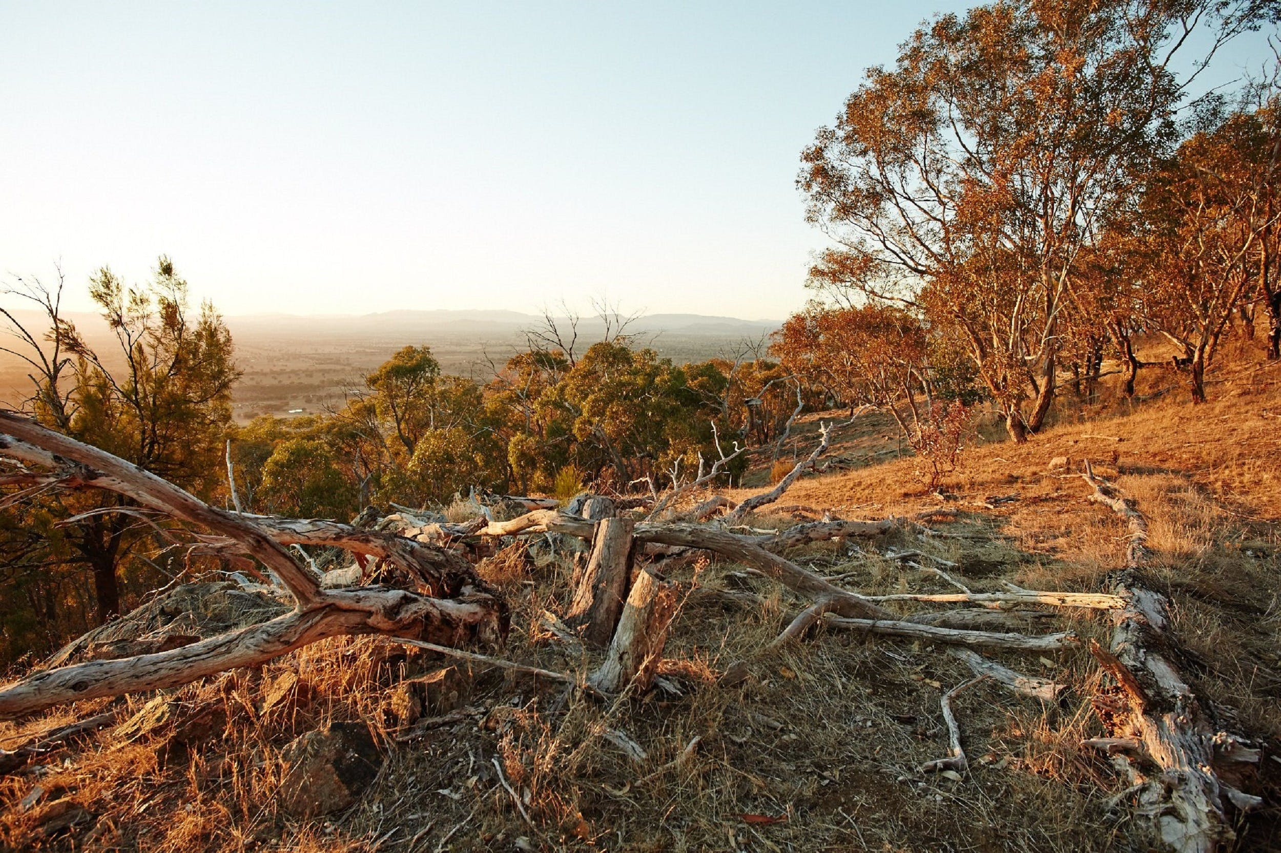 Chick Hill Walk - Carnarvon Accommodation