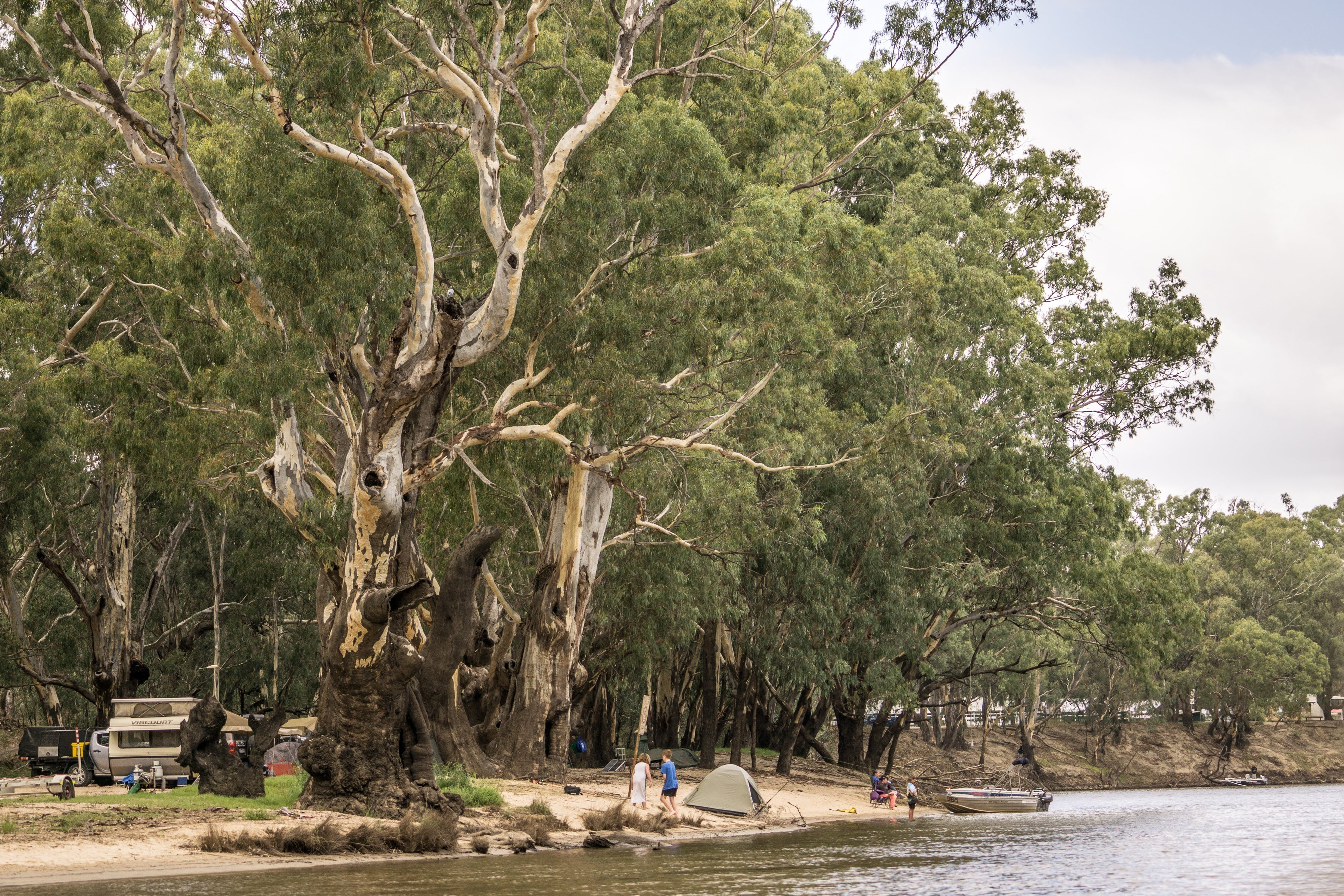 Edward River - Carnarvon Accommodation