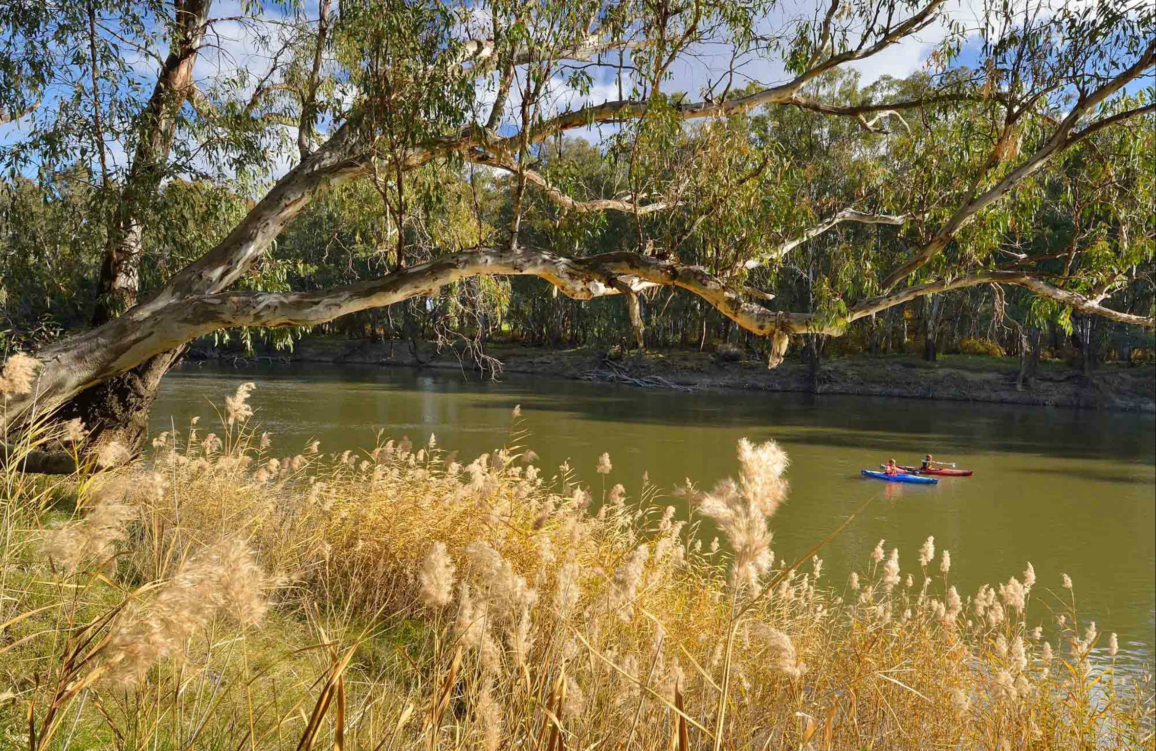 Murrumbidgee Valley National Park - Carnarvon Accommodation
