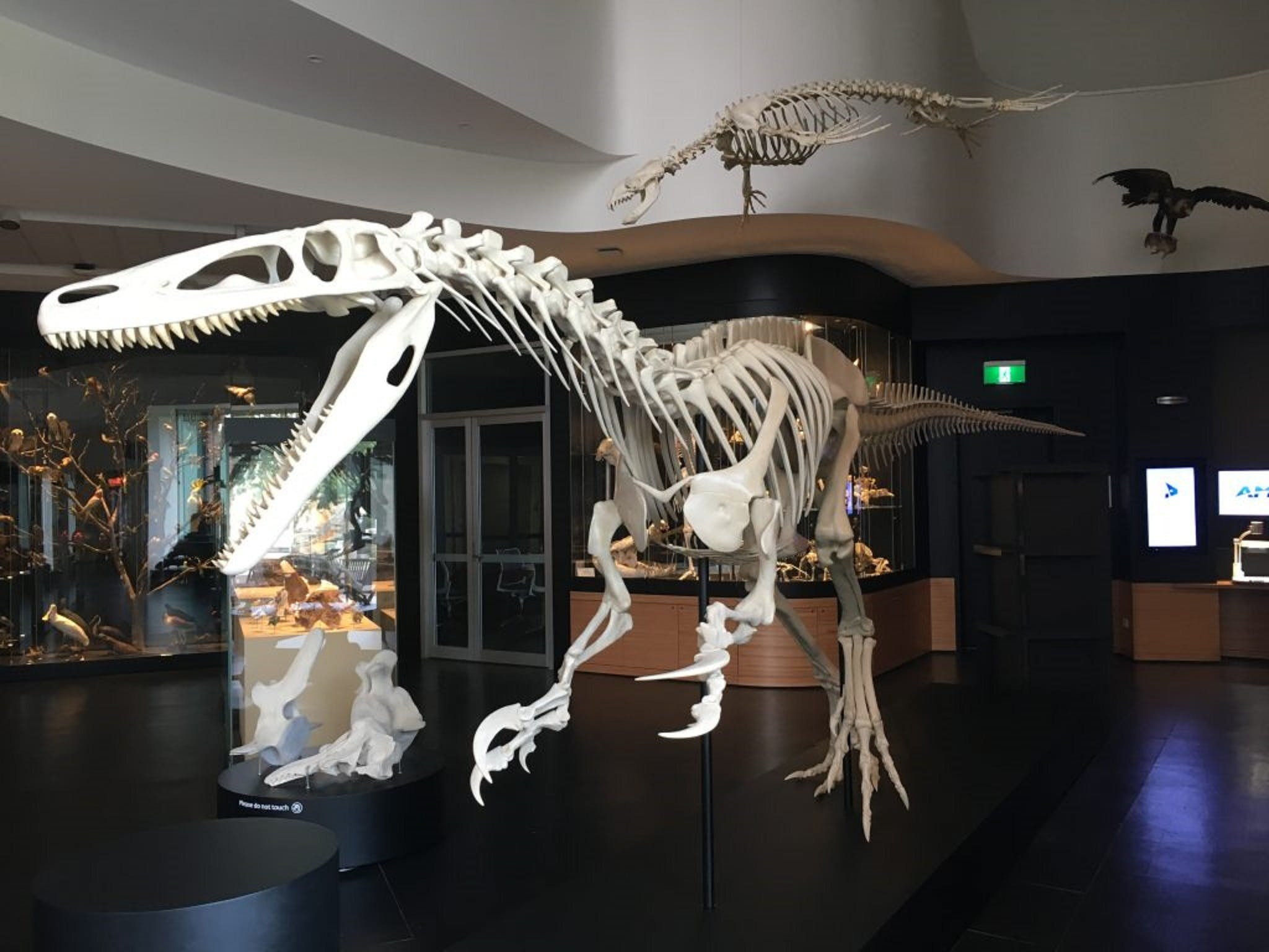 UNE Natural History Museum - Carnarvon Accommodation