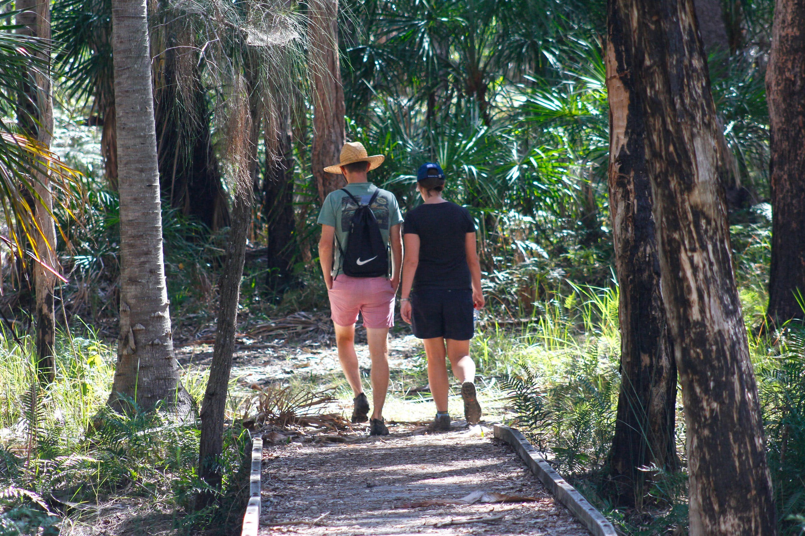 Banksia Track Burrum Coast National Park - Carnarvon Accommodation