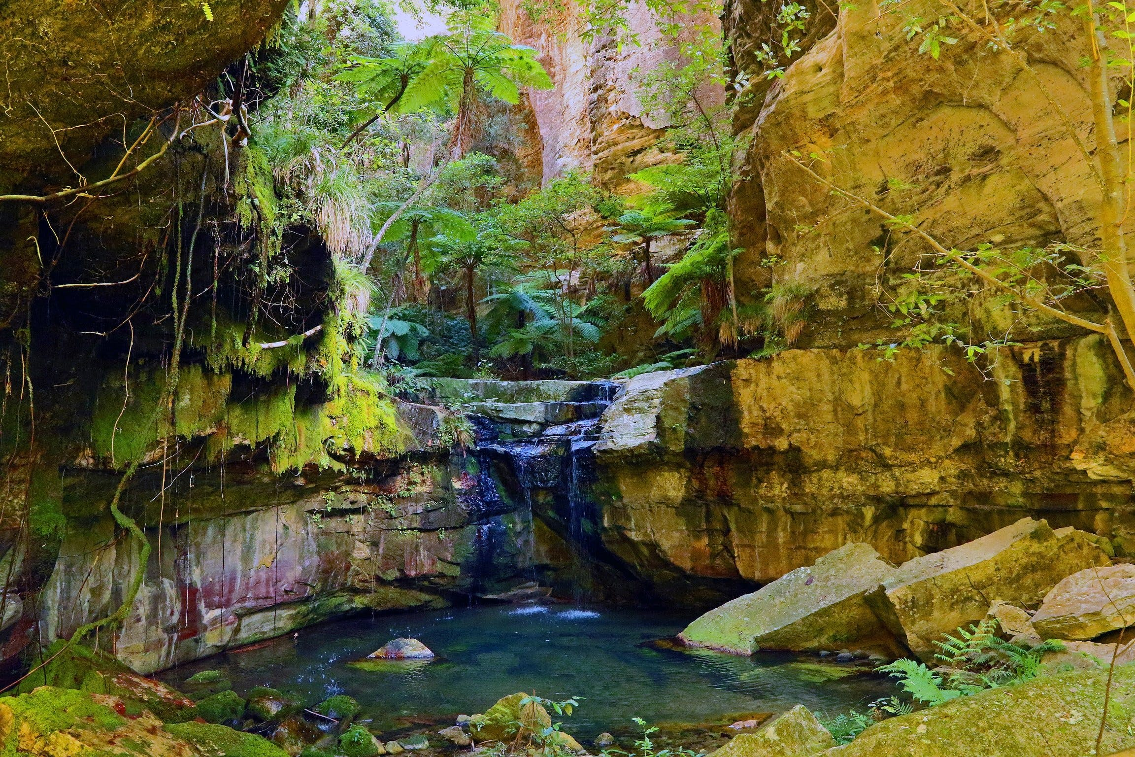 Glimpse of the Outback 5 Day Tour - Roma and Surrounds - Carnarvon Accommodation