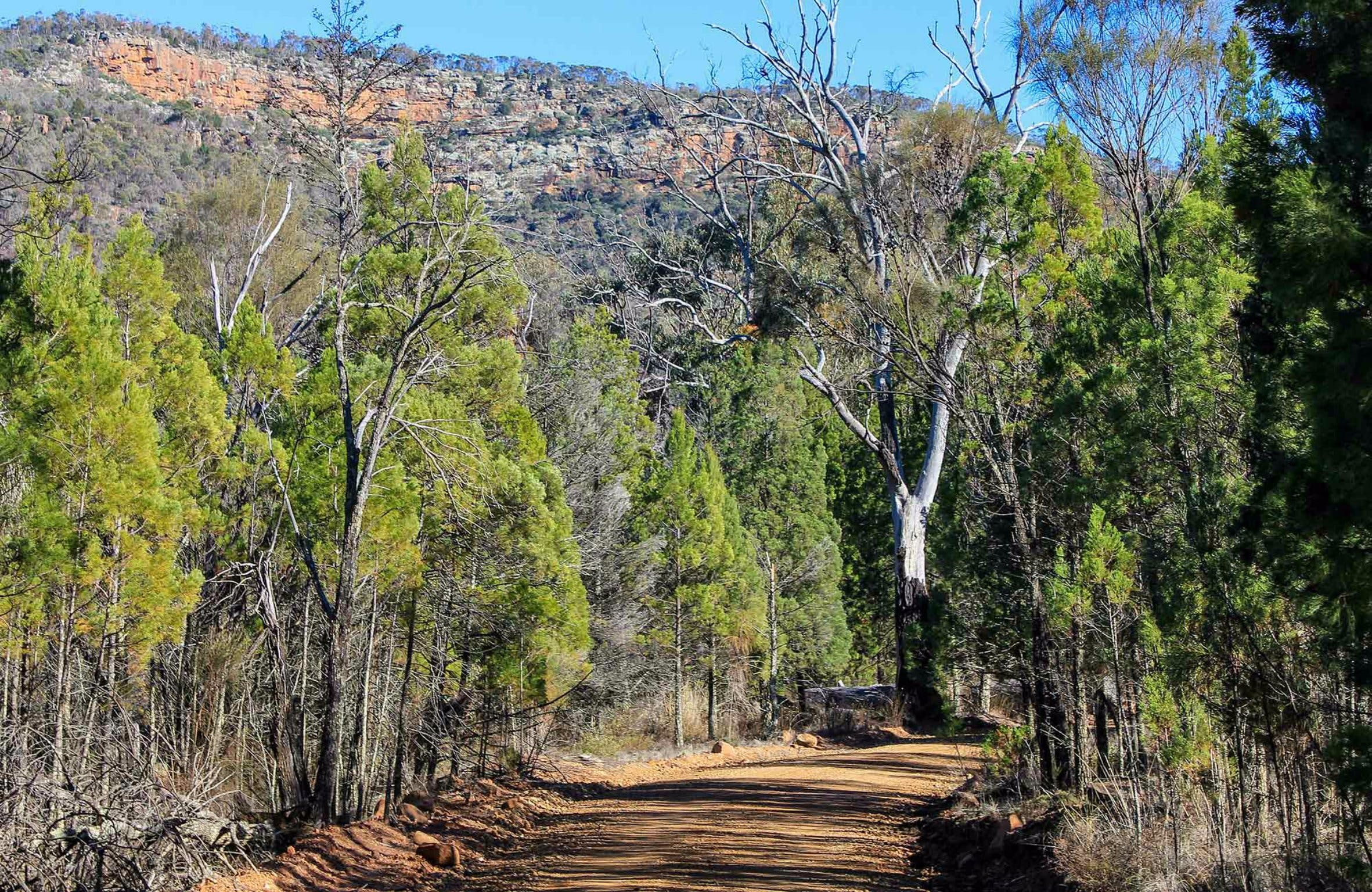 Weddin Gap to Black Spring Loop Trail - Carnarvon Accommodation