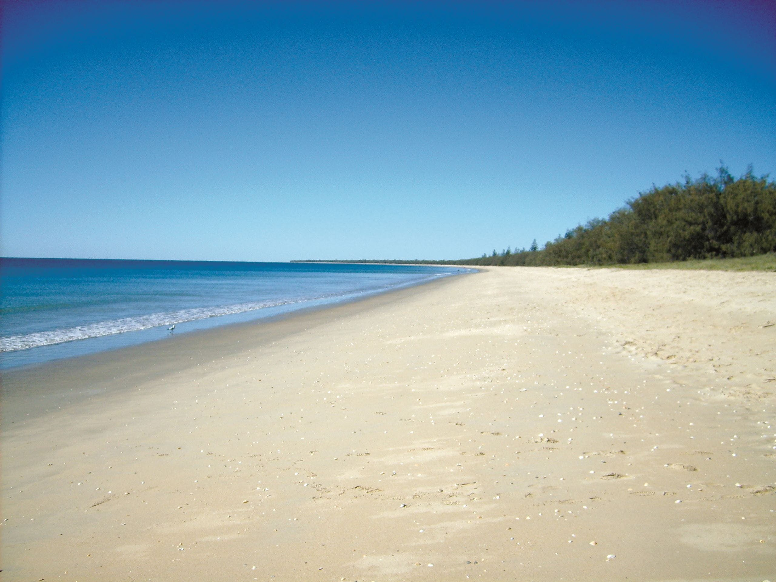 Coral Coast Pathways Woodgate Beach Section - Carnarvon Accommodation