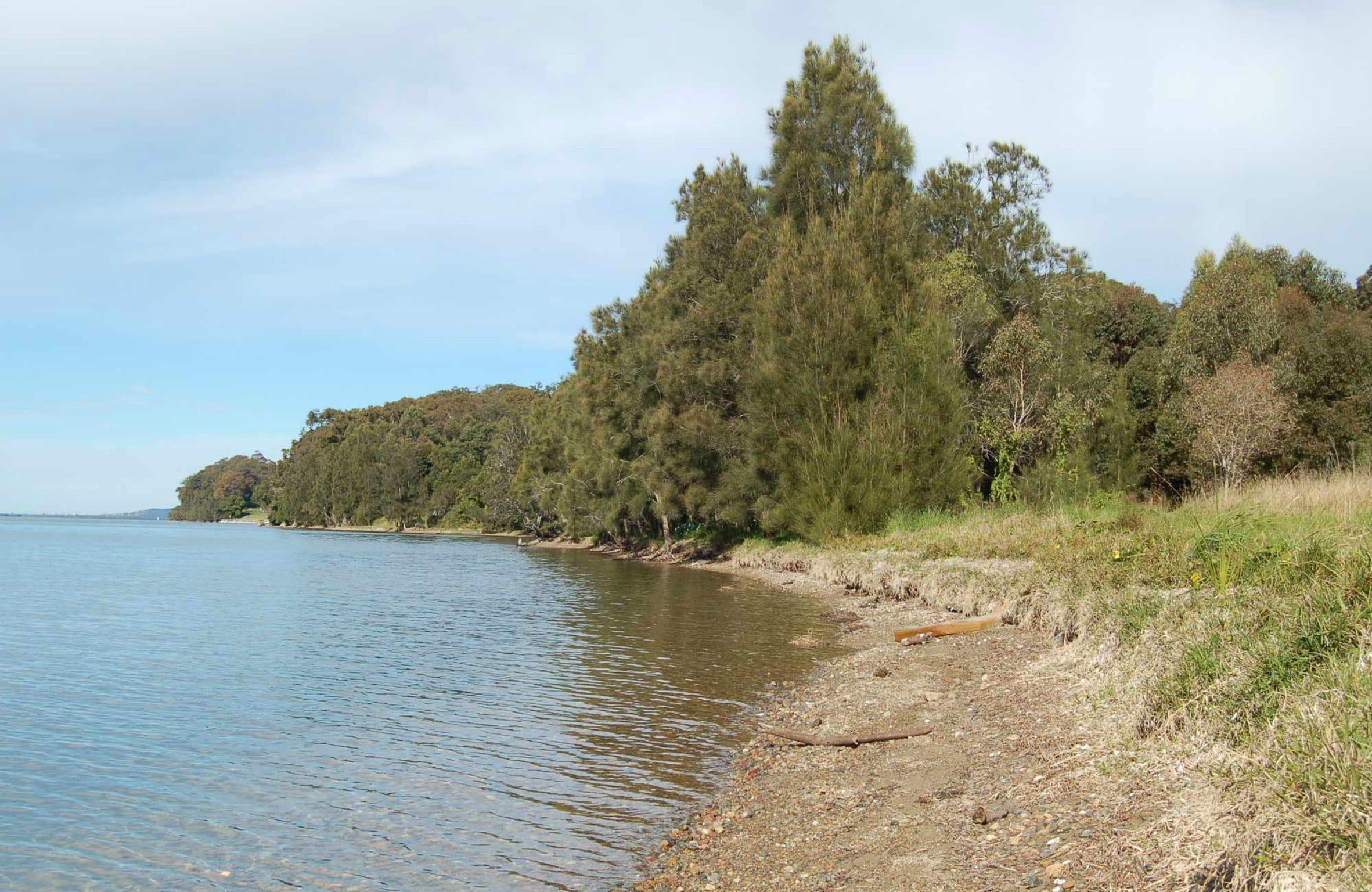 Lake Macquarie State Conservation Area - Carnarvon Accommodation
