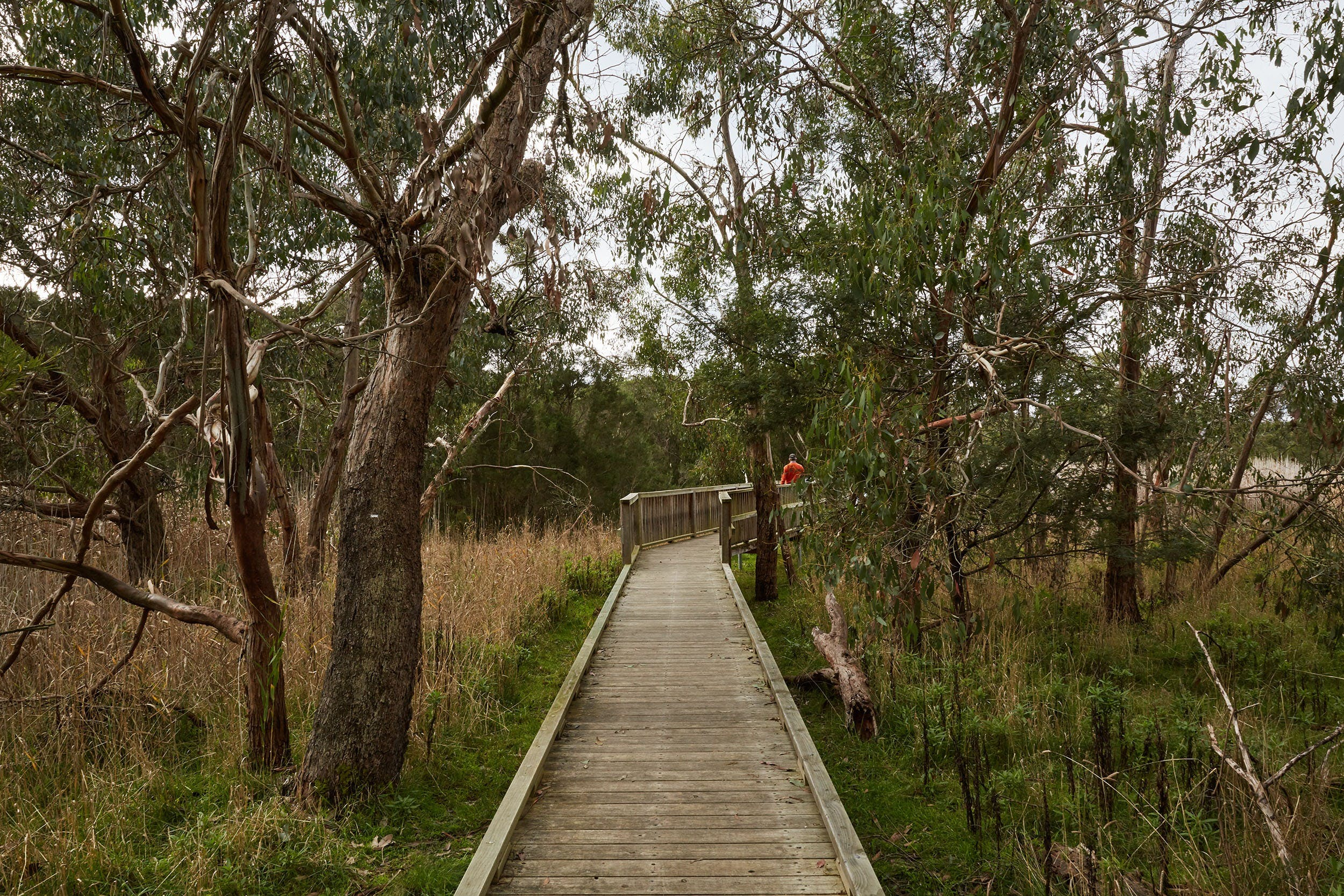 The Briars Park Walking Trails - Carnarvon Accommodation