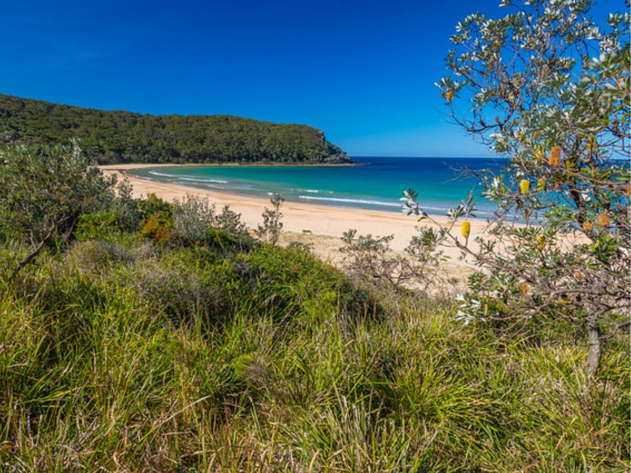 North Durras Beach - Carnarvon Accommodation