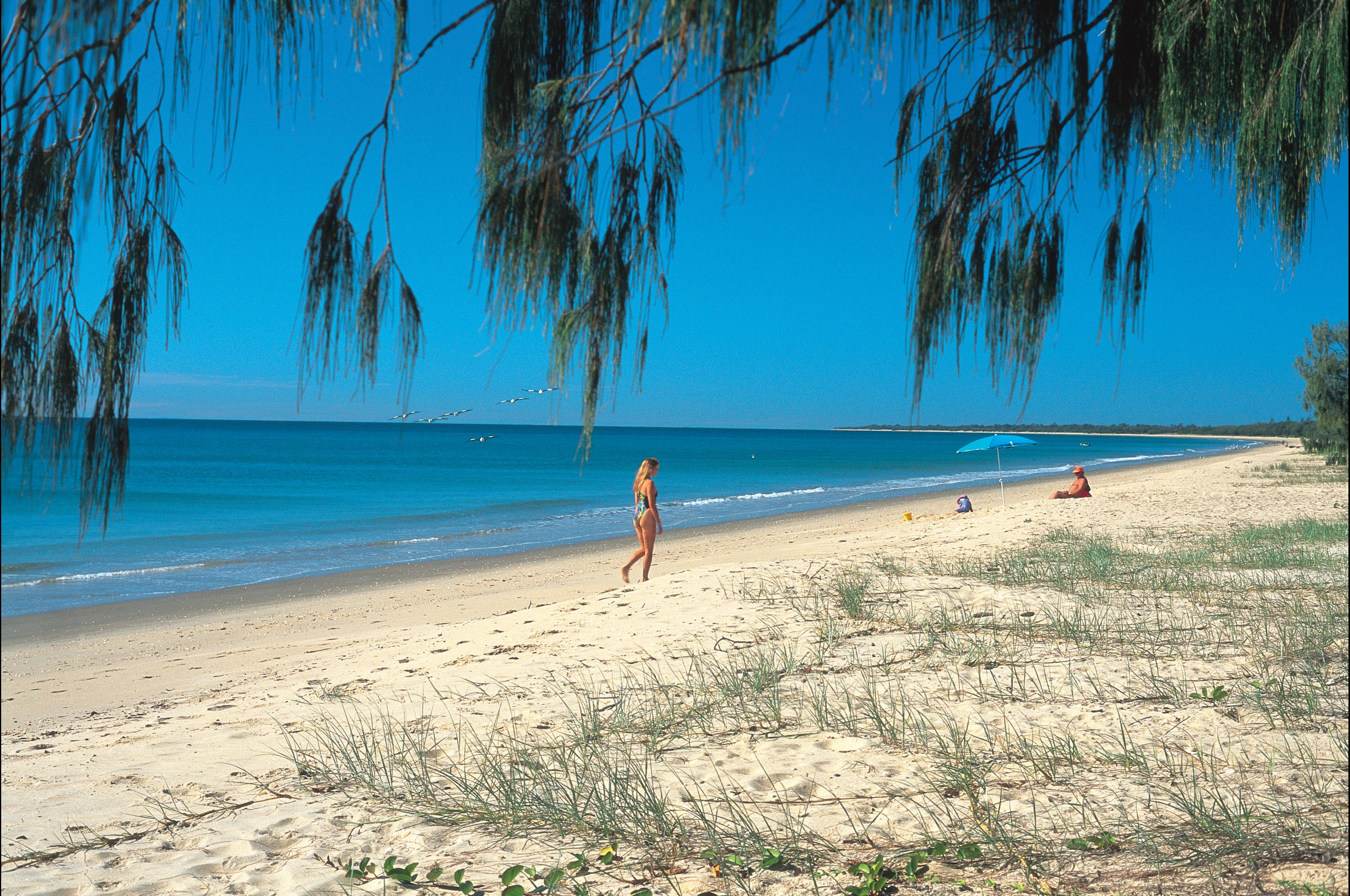 Woodgate Beach Park and Playground - Carnarvon Accommodation