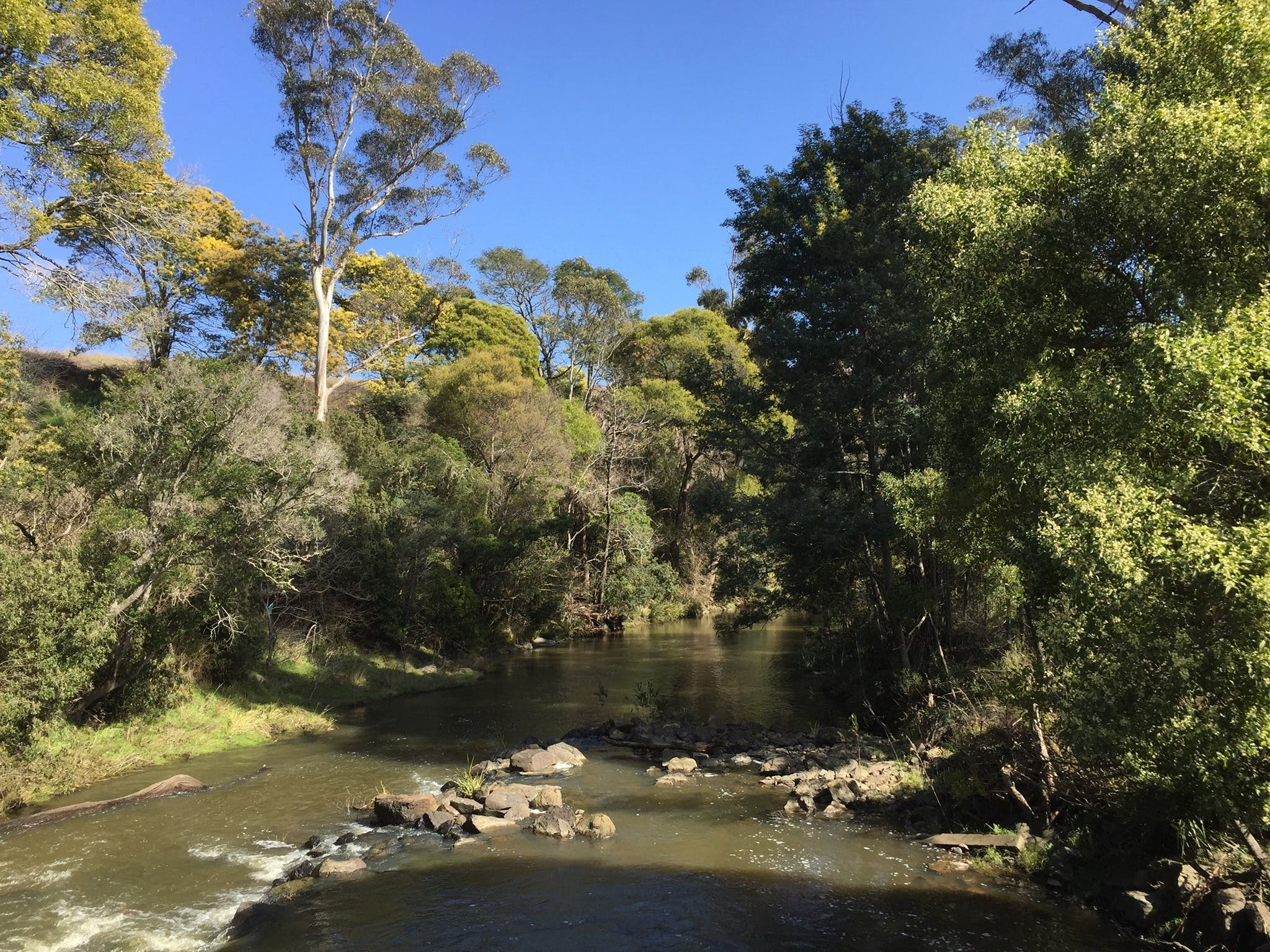 Pipers River Board Walk - Carnarvon Accommodation