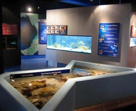 Marine and Freshwater Discovery Centre - Carnarvon Accommodation