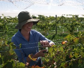 Kingsdale Wines - Carnarvon Accommodation
