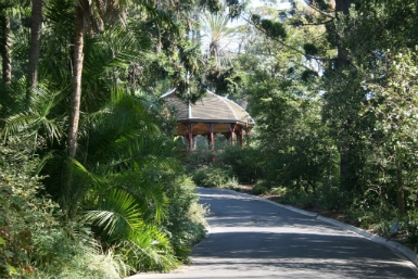 Royal Botanic Gardens Victoria - Carnarvon Accommodation
