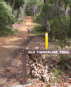 Old Timberline and Sidings Rail Trails - Carnarvon Accommodation