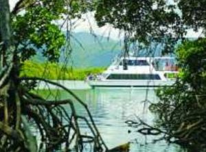Cairns Harbour Cruises - Carnarvon Accommodation