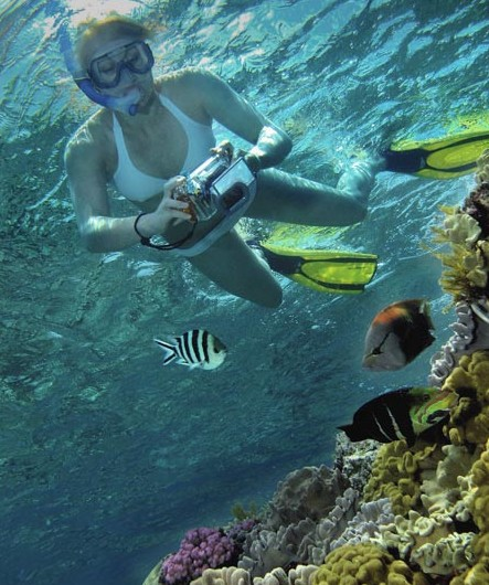 Calypso Reef Charters - Carnarvon Accommodation
