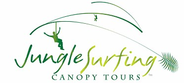 Jungle Surfing Canopy Tours and Jungle Adventures Nightwalks - Carnarvon Accommodation