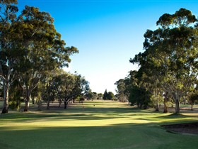 Loxton Golf Club - Carnarvon Accommodation