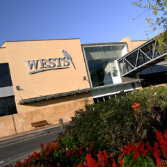 Wests New Lambton