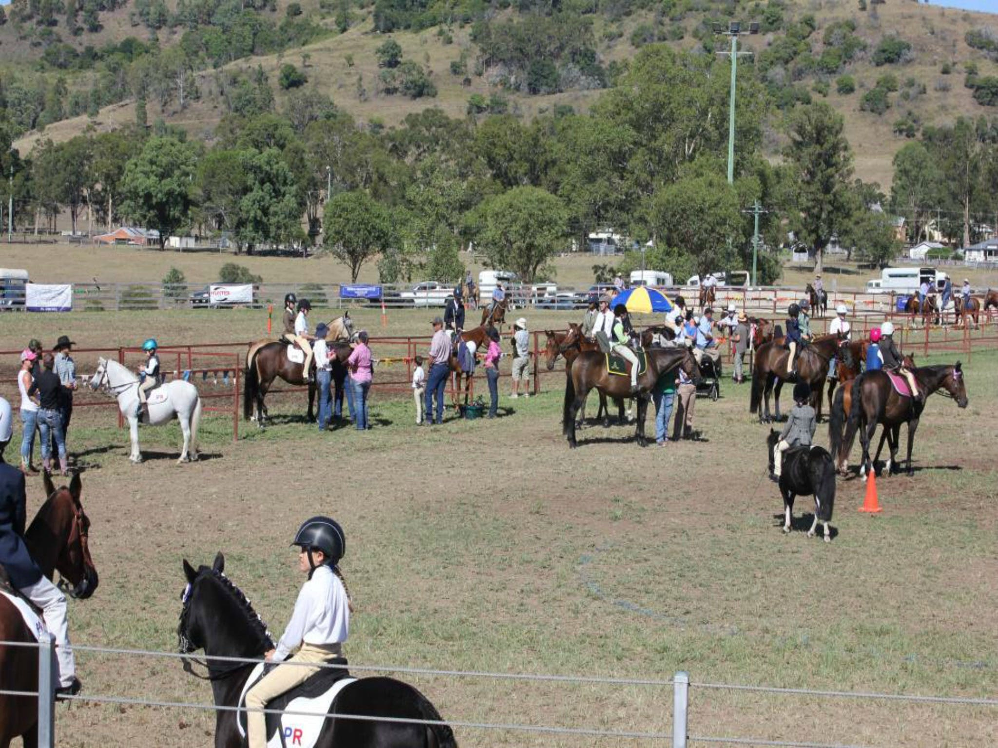 Gresford Agricultural Show - Carnarvon Accommodation