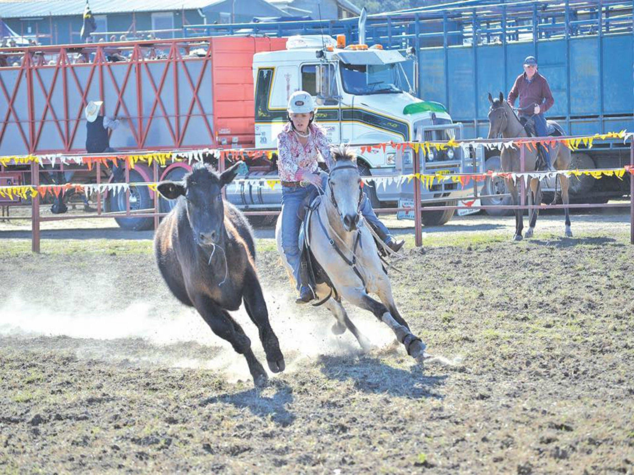 Gresford  Campdraft and Rodeo - Carnarvon Accommodation