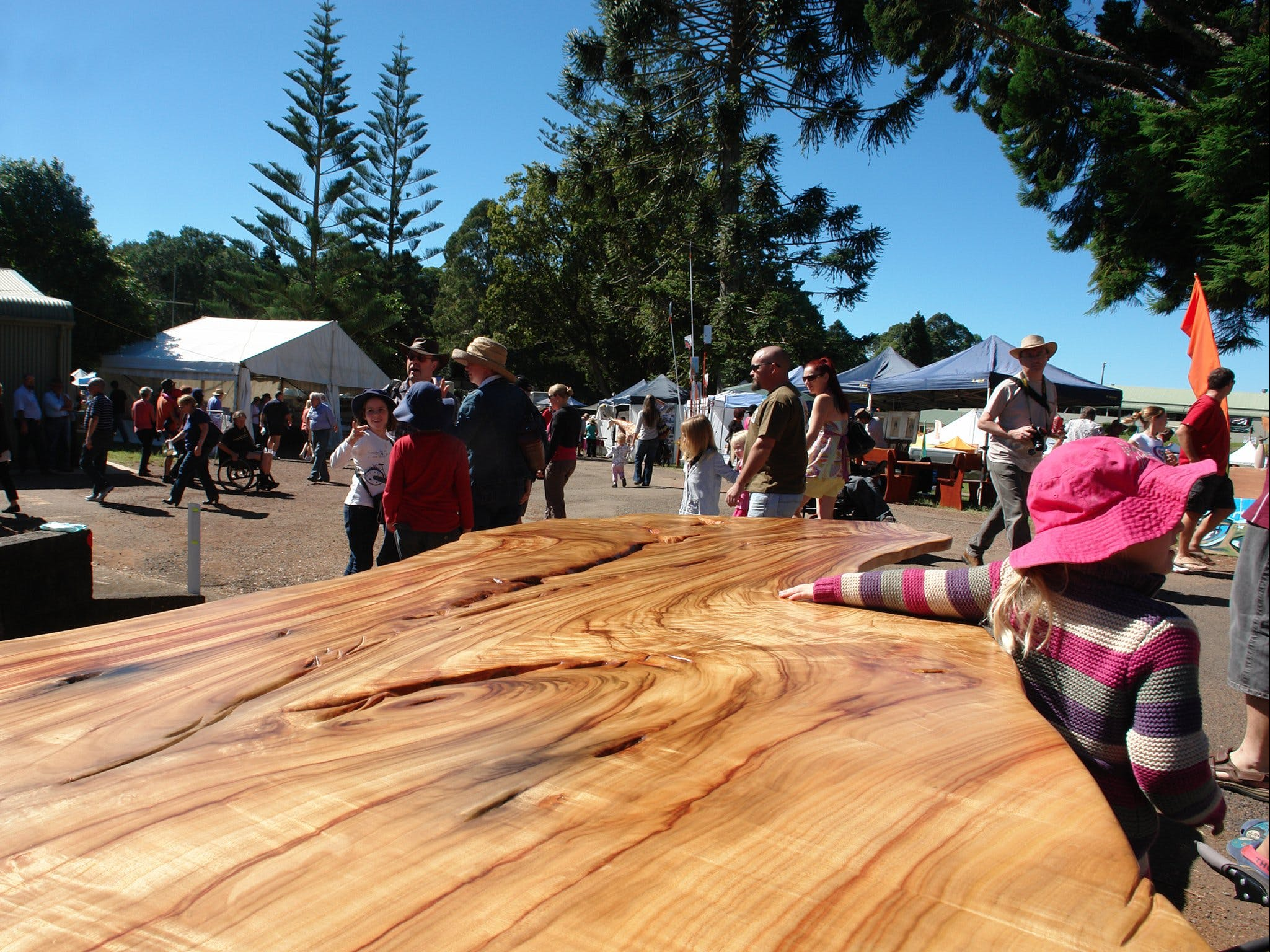 Maleny Wood Expo From Seed to Fine Furniture - Carnarvon Accommodation